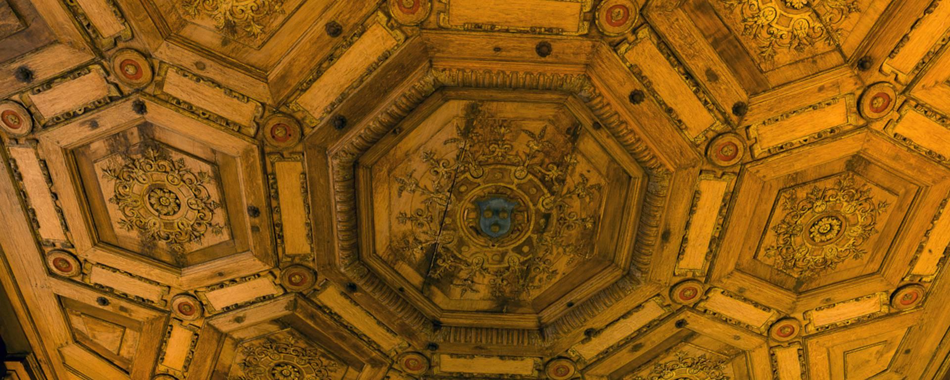 Soffitto del castello di Beauregard