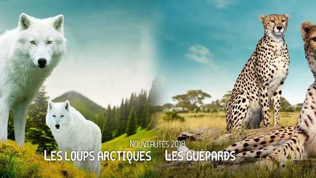 Gli animali dello ZooParc di Beauval
