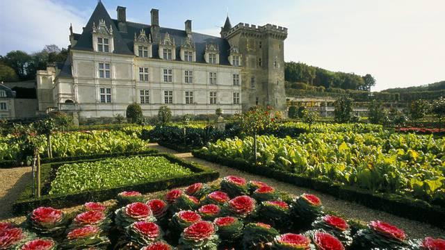 Il castello e i giardini di Villandry © Catherine Bibollet
