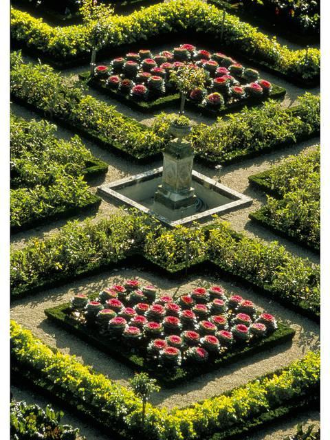 I giardini di Villandry © Catherine Bibollet