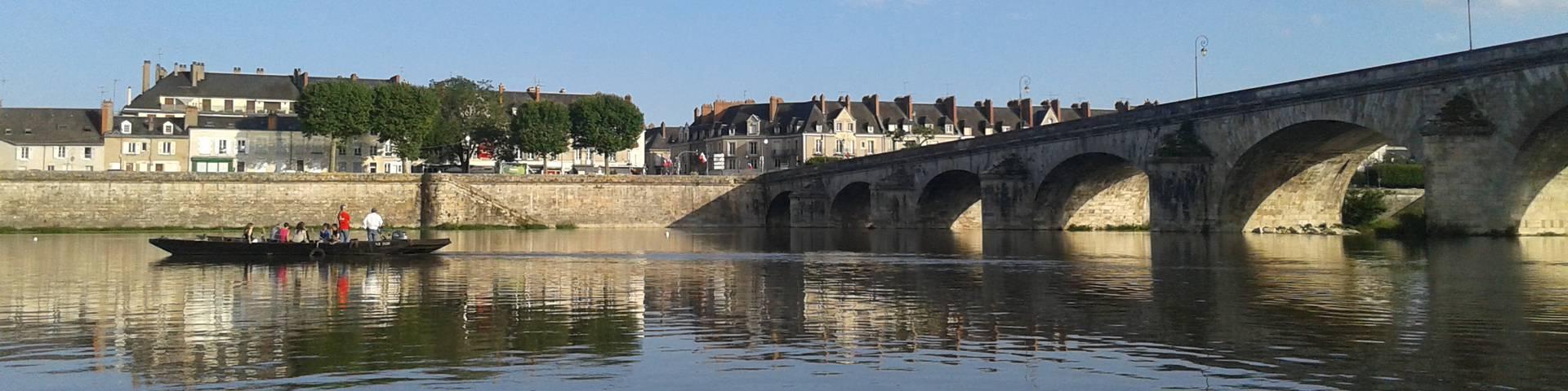 Il fiume Loira