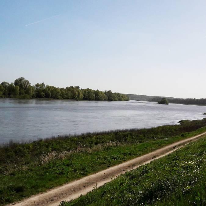 Le rive della Loira a Chouzy-sur-Cisse