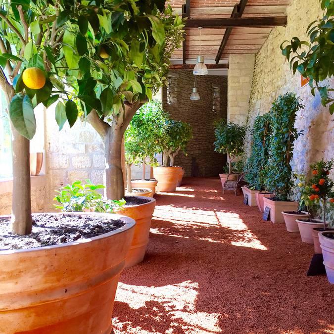 I giardini del castello Gaillard © OTBC